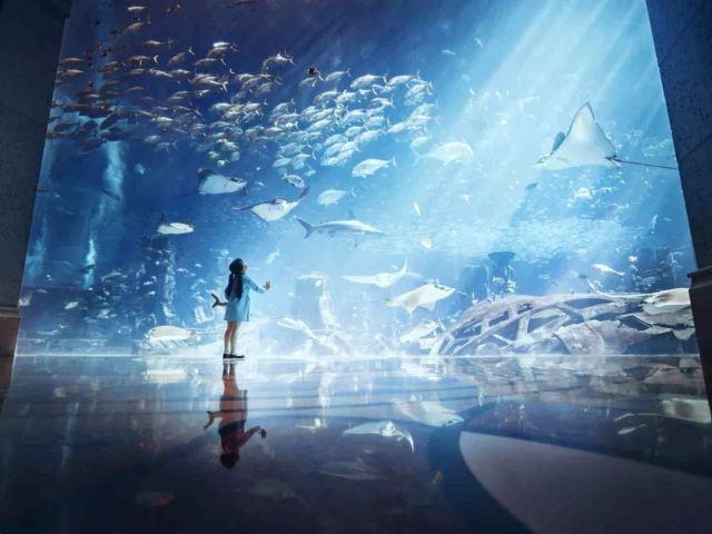 好享海南·極致之旅 | 即將啟程,最夯體驗團亮相+精彩行程呼之欲出