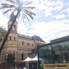 Art Gallery of South Australia User Photo