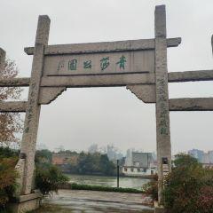 青莎公園用戶圖片