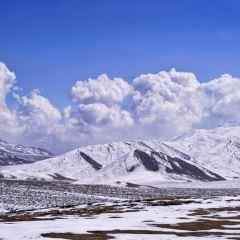 高山牧場用戶圖片