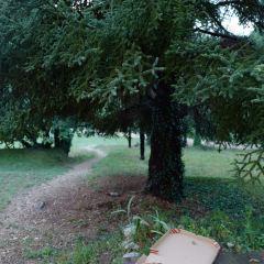 凡爾登自然公園用戶圖片