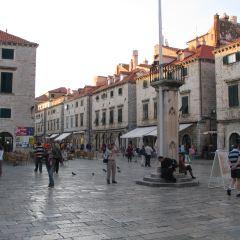 Luza Square用戶圖片