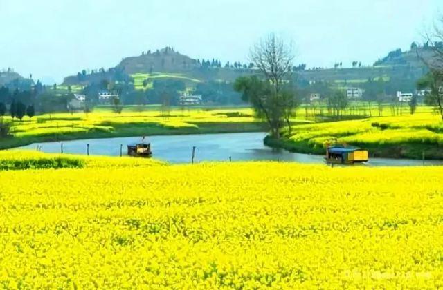"""這個春天,我們一起去桂林""""掃黃""""吧!"""