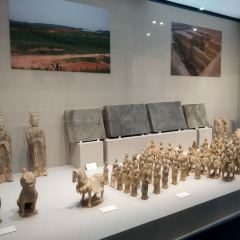 鄭州博物館用戶圖片