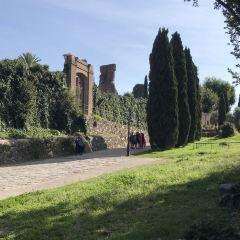 Chalet Giardini Margherita User Photo