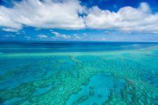 大堡礁-大堡礁-M29****5227