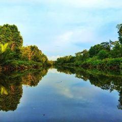 亞庇市濕地中心 用戶圖片