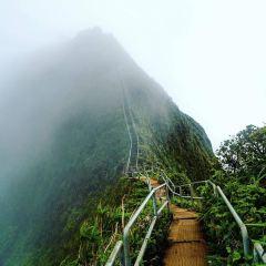 Oahu User Photo
