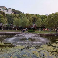 島沁公園用戶圖片