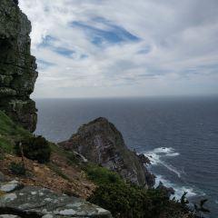 Cape Point Nature Reserve用戶圖片