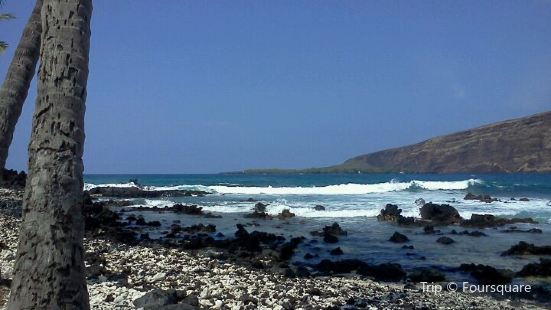 Manini Kapahukapu Beach