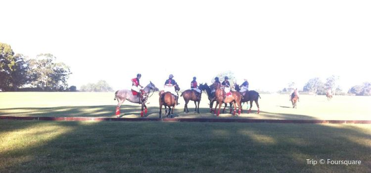 Coronel Suarez Polo Club1