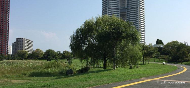 Island City Central Park