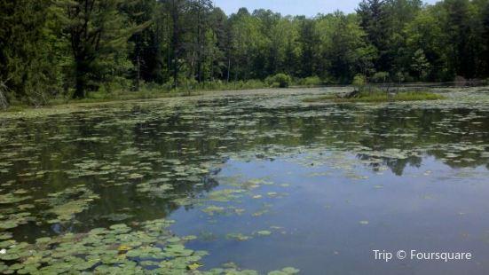 Wahkeena Nature Preserve