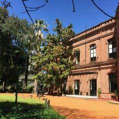 Jardín Botánico Carlos Thays User Photo