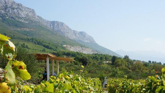 Putalj Winery