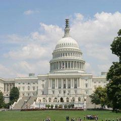 國會山用戶圖片