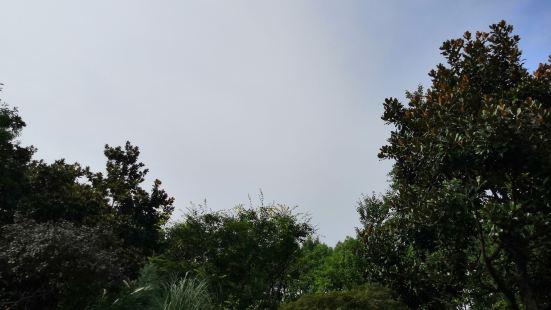湯溝森林公園