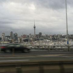 Auckland Bridge Climb User Photo