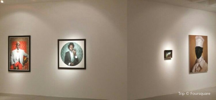 Goodman Gallery3