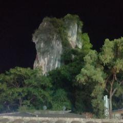 양숴 공원 여행 사진