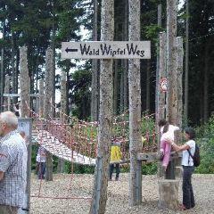 Waldwipfelweg User Photo