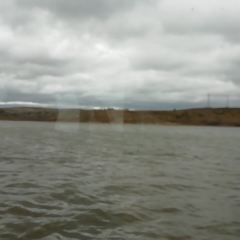 察爾湖旅遊區用戶圖片