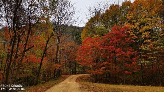 白石山國家森林公園