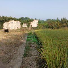 Gucheng Sceneic Area User Photo