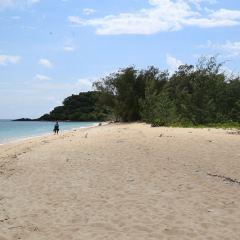 Frankland Islands User Photo