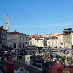 Venetian House User Photo