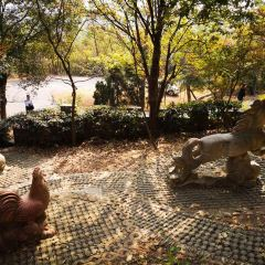 金壇茅山風景區用戶圖片