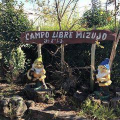 Mizujo Campo Libre User Photo