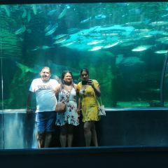 Two Oceans Aquarium User Photo