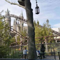 Flight of the Hippogriff User Photo