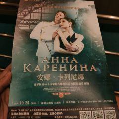 Shenzhen Grand Theatre User Photo