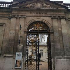 Musée Calvet User Photo