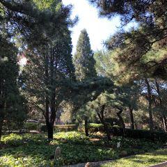 Luxun Park User Photo