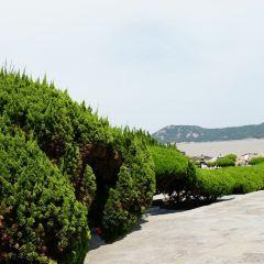 紫竹林用戶圖片