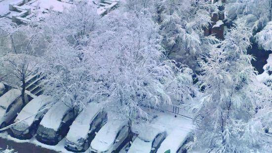 湟水森林公園