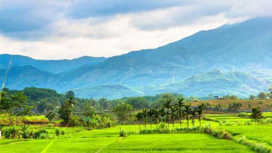 五指山国家級自然保護区