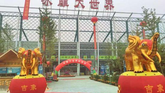 Zhiwuyuan Bingdiao Da World