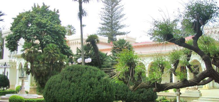Anfiteatro Quinta Vergara1