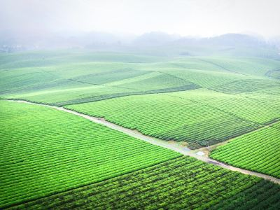 Chahai Scenic Area