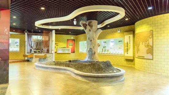 蕭山博物館