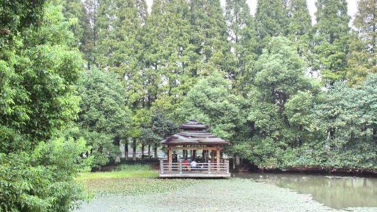 黄山湖公園