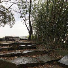 구루메성 여행 사진