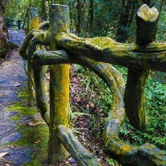 Doupeng Hill User Photo