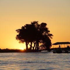 Chobe National Park User Photo