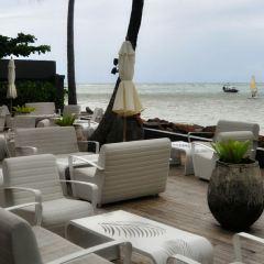 Palm Seaside User Photo